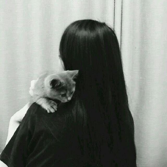 avatar đôi người thật yêu mèo