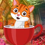 G4K Dainty Cat Escape