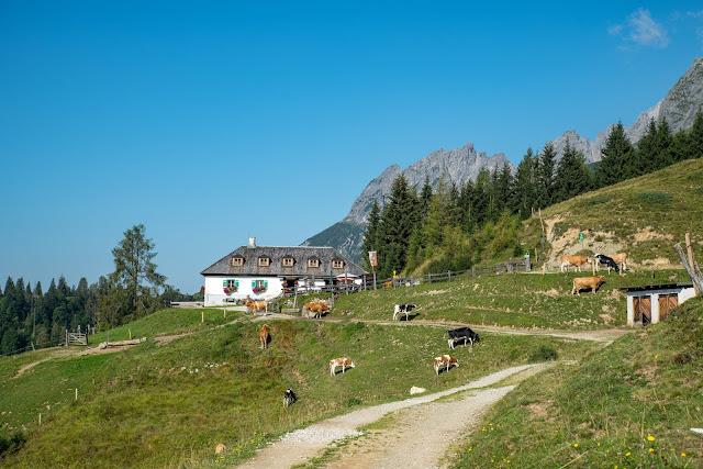 Vier-Hütten-Wanderung Mühlbach  Wandern am Hochkönig  Wanderung SalzburgerLand 05