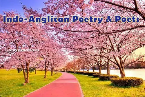 Indian Writing in English Poetry : The Best Essay