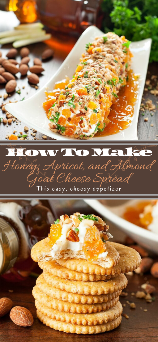 Honey, Apricot, and Almond Goat Cheese Spread #healthyfood #dietketo #breakfast #food