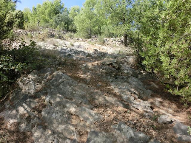 trialera de la cueva park cerca de la vall d'uixó