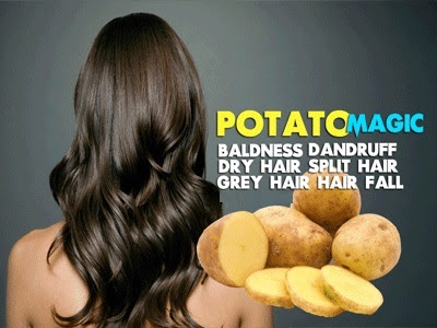 Potato for hair loss treatment
