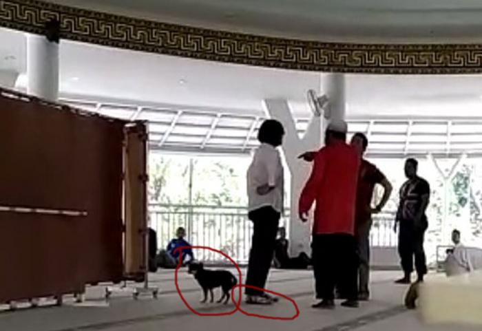 Kapolres Bogor Akui Masih Periksa Wanita Pembawa Anjing ke Masjid