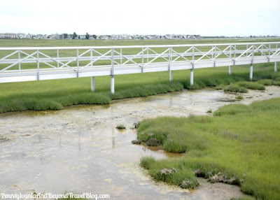 The Wetlands Institute in Stone Harbor New Jersey