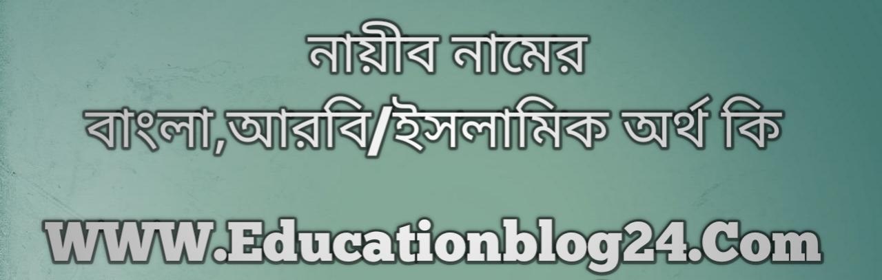 Nayib name meaning in Bengali, নায়ীব নামের অর্থ কি, নায়ীব নামের বাংলা অর্থ কি, নায়ীব নামের ইসলামিক অর্থ কি, নায়ীব কি ইসলামিক /আরবি নাম