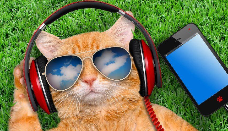 site pour télécharger musique mp3 gratuitement