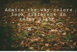rainy light day quotes