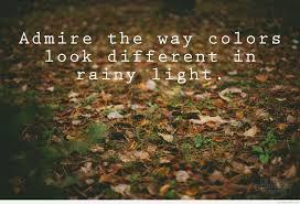 rainy light day quotes