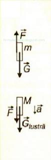 fizica probleme rezolvate