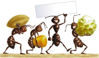 come-eliminare-formiche-fastidiose