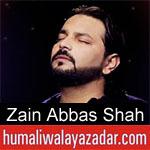 https://www.humaliwalayazadar.com/2019/09/zain-abbas-shah-nohay-2020.html