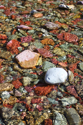 Colorful stones in Two Medicine Creek, Montana