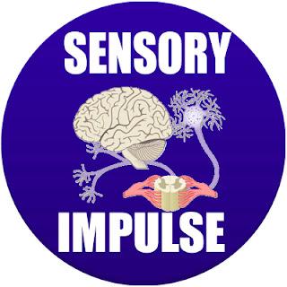 sensory impulse in spanish