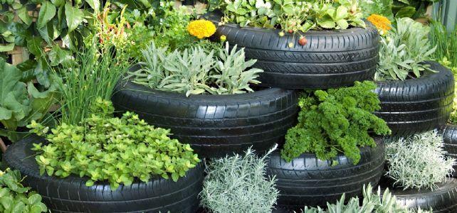 horta e jardim em pneus : horta e jardim em pneus:Horta Urbana: Horta Em Pneus