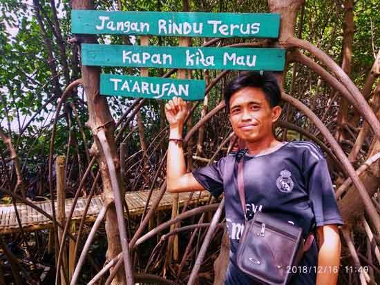 Destinasi Ekowisata Mangrove Sungai Rindu