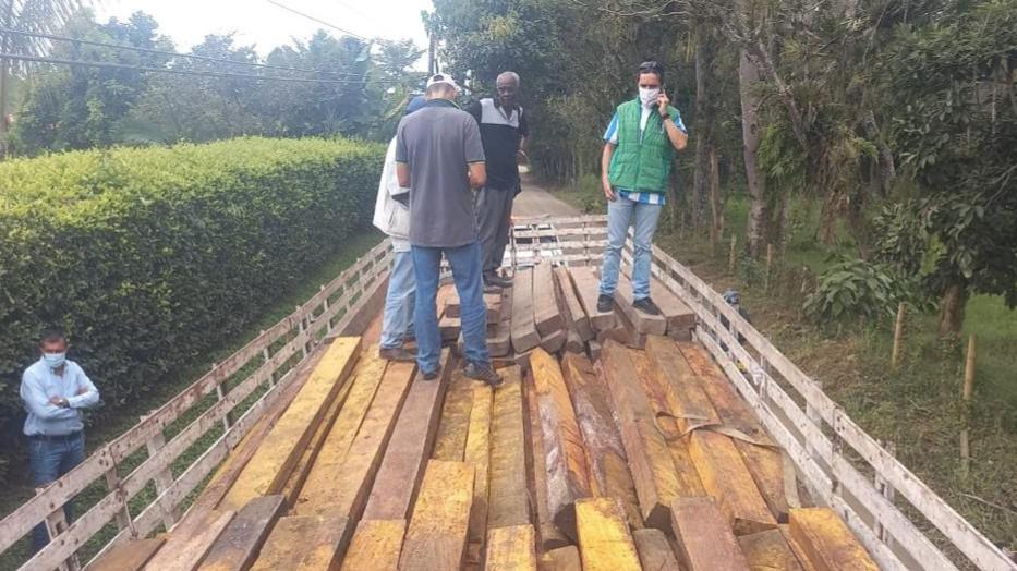 En un duro golpe al transporte ilegal de madera, la CARDER decomisó 138 bloques de caimito