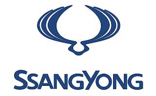 مراكز خدمة سانج يونج