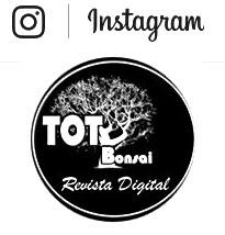 totbonsai Instagram