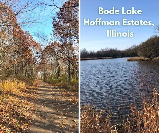 Late Fall Amble at Bode Lake in Hoffman Estates, Illinois