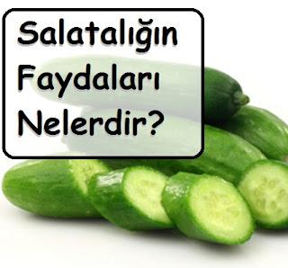Salatalığın Faydaları Nelerdir