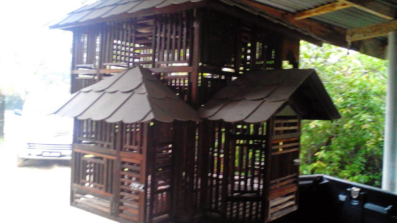 Rumah Burung Untuk Tempahan Saiz 70 Inci Tinggi Dan Bukaan 4x4 Kaki