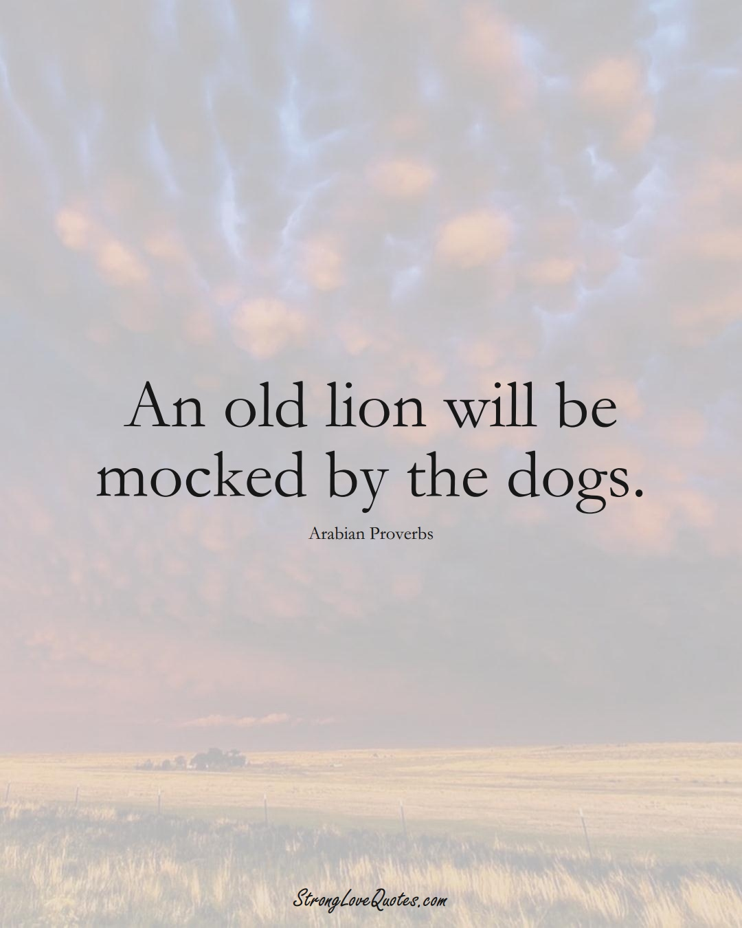 An old lion will be mocked by the dogs. (Arabian Sayings);  #aVarietyofCulturesSayings