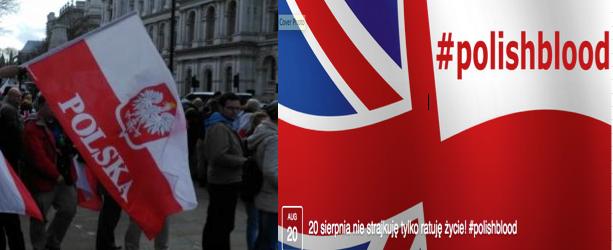 Strajk Polaków w Anglii i #Polishblood