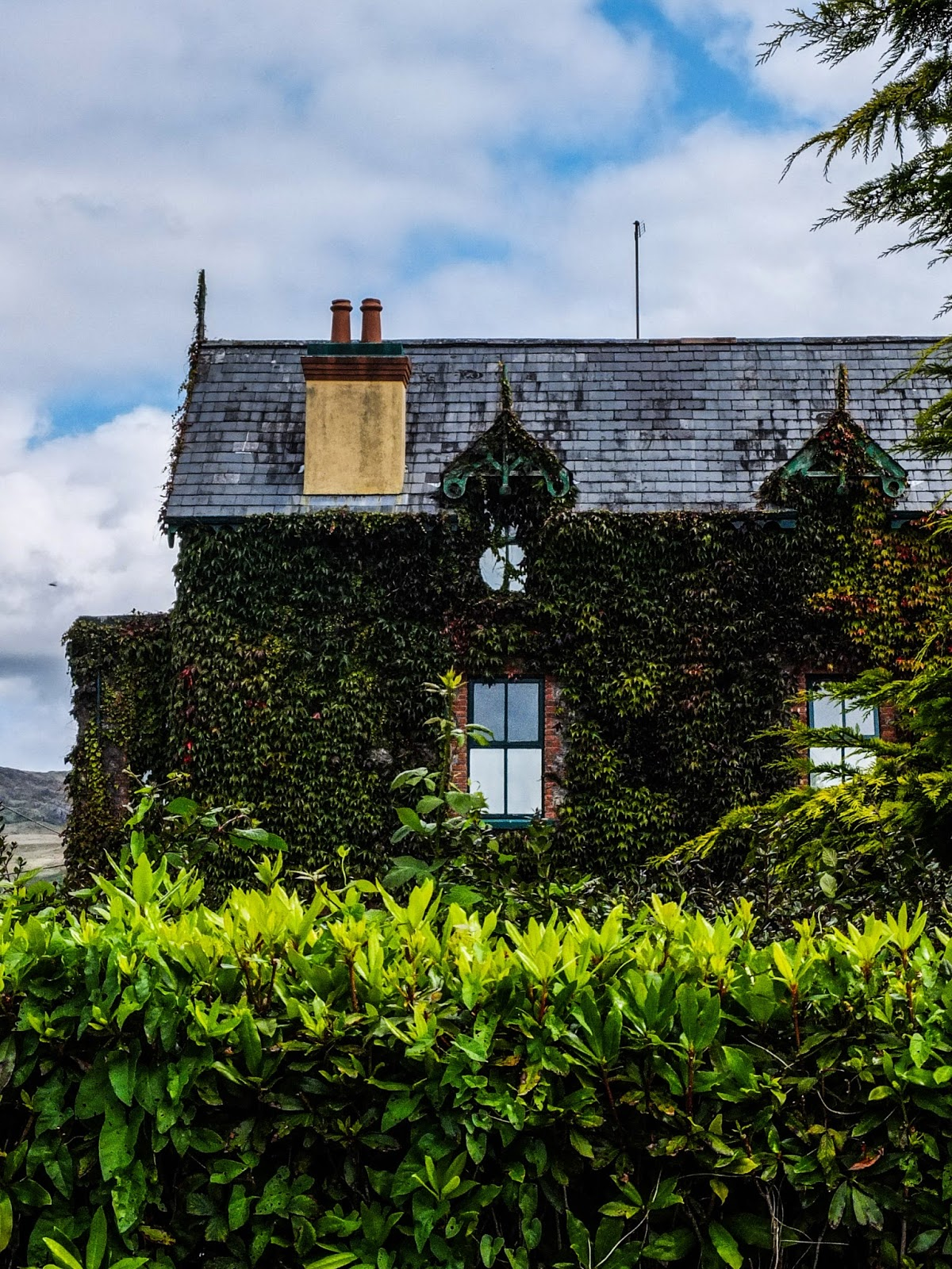 A red brick building covered with ivy in Glengariff, Co.Cork.