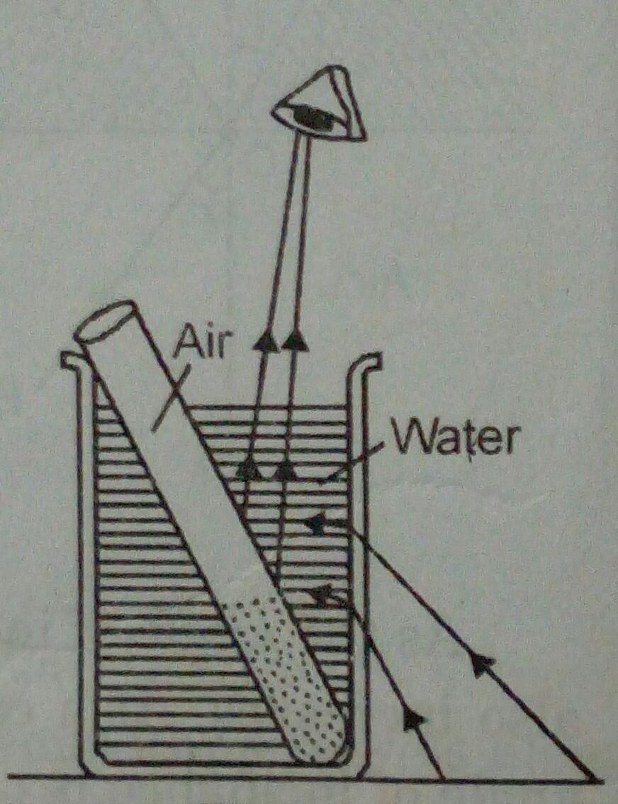 Physics Gyan Eyediagramjpg