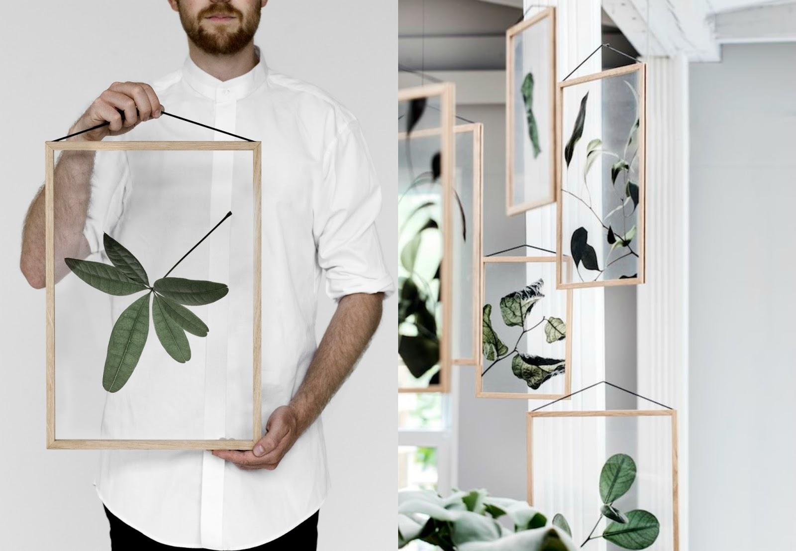 Naturalne dekoracje do mieszkania