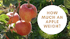 How much does an apple weigh - Nafanews 2021