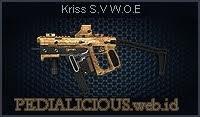 Kriss S.V W.O.E