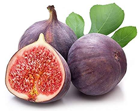 dry fig benefits in tamil,anjeer weight loss,anjeer fruit nutrition,uses of dry anjeer,fig milk benefits,benefits of having anjeer,benefits of eating fig fruit,anjeer fruit health benefits,fig and dates milkshake benefits,anjeer dry fruit is good for pregnancy,advantages of dried figs,advantages of anjeer dry fruit,athi fruit juice benefits,benefits of anjeer dry,athi fruit uses in tamil,raw fig benefits,english name of anjeer dry fruit,anjir advantage,dry fig benefits during pregnancy,benefits of eating fresh figs,benefits of eating anjeer during pregnancy,uses of fig fruit in tamil,fig benefits for diabetes,benefits of anjeer for male,anjeer for piles in hindi,medicinal value of fig,aththi pazham benefits,anjeer dry fruit benefits in hindi,benefits of figs with milk,anjeer fruit good for diabetes