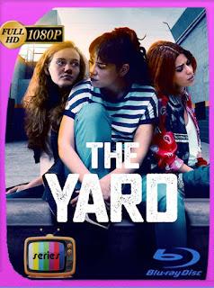 Avlu: El patio Temporada 1 (2019) HD [1080p] Latino [GoogleDrive] SilvestreHD