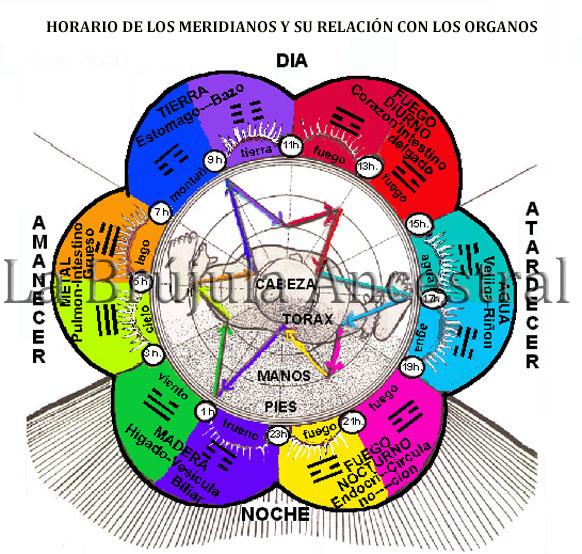 Horario Meridianos