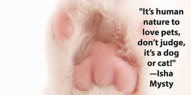 Instagram dog love quotes for dog lover short Isha Mysty