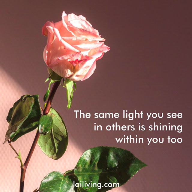 light quotes