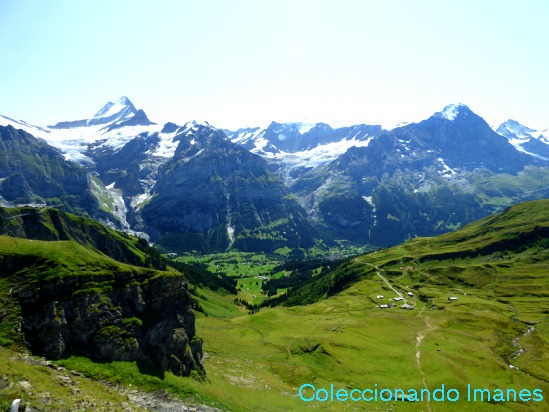 Camino a Grindelwald - First