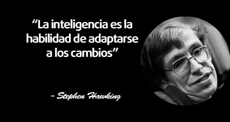 Las 20 Mejores Frases De Stephen Hawking El Club De