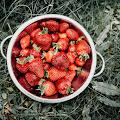 Truskawkowe lato - dziecięca sesja z truskawkami w ogrodzie