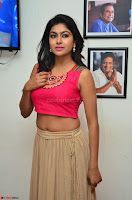 Akshita super cute Pink Choli at south indian thalis and filmy breakfast in Filmy Junction inaguration by Gopichand ~  Exclusive 016.JPG