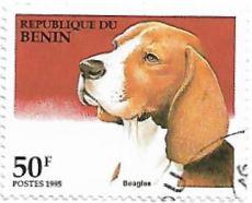 Selo Beagle