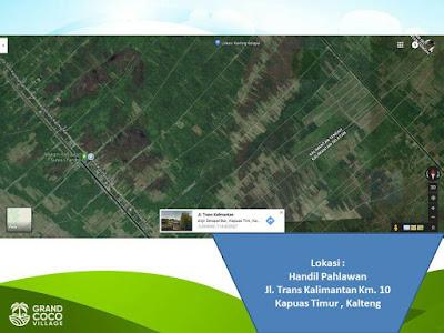 Investasi Kavling Produktif Grand Coco Village - Kavling Pohon Kelapa