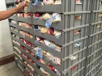 Roti BS atau Roti Kadaluwarsa Sebagai Pakan Tambahan Untuk Jangkrik