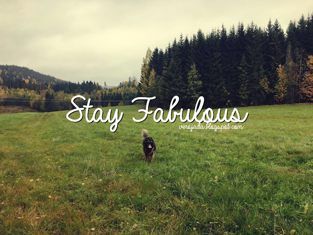 fabulous, stay fabulous, stay, amazing, blogger, leonberger