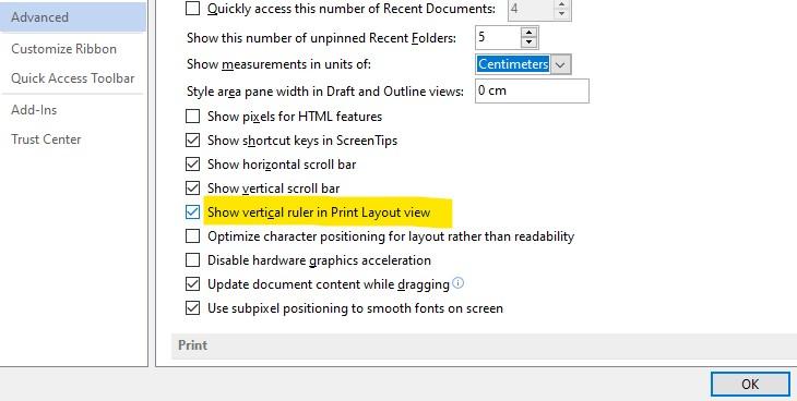 Pilihan Show Vertical Ruler di Microsoft Word