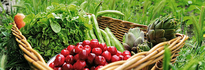 QSN: Comer verduras crudas