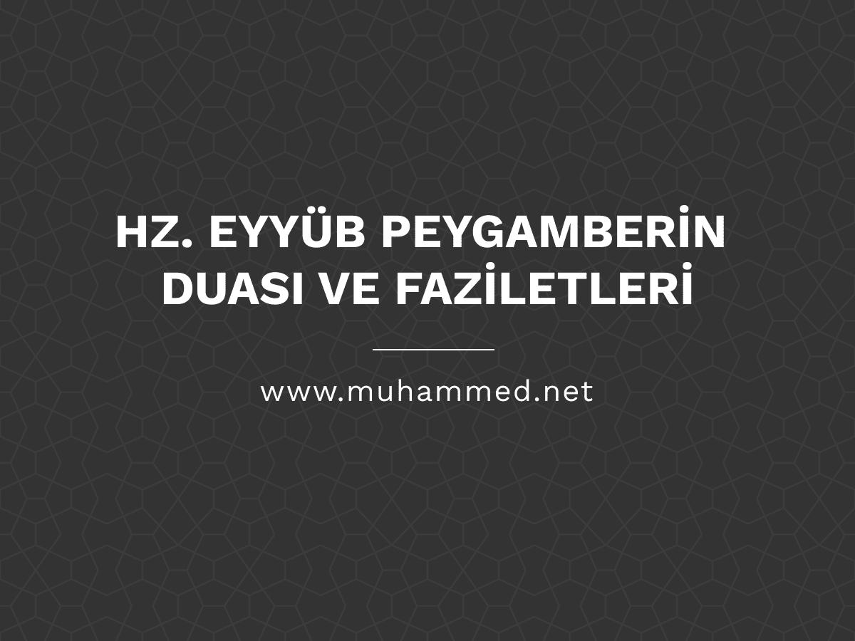 Hz. Eyyüb Peygamberin Duası ve Faziletleri