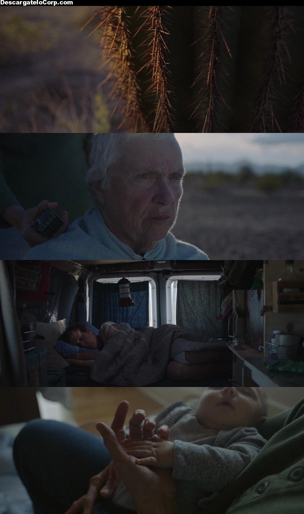 Nomadland (2020) HD 720p